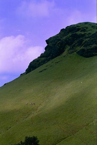 Kudremukh_hillside