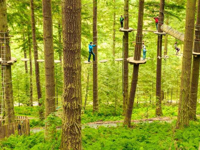 events-attractions-go-ape-crossings