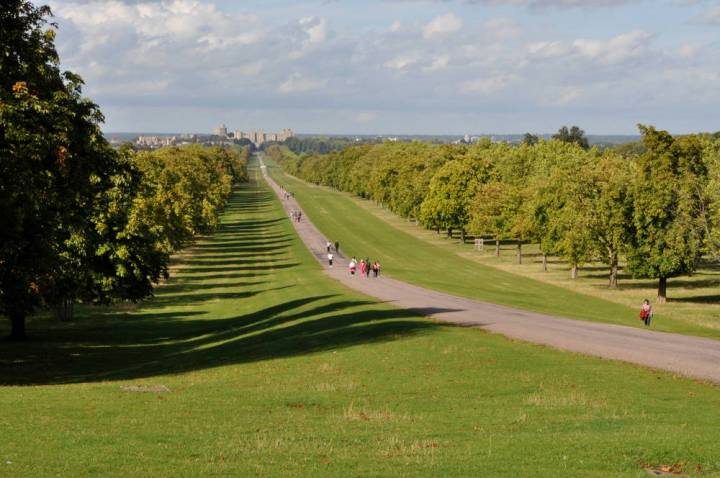windsor-long-walk-monuments-3286-large